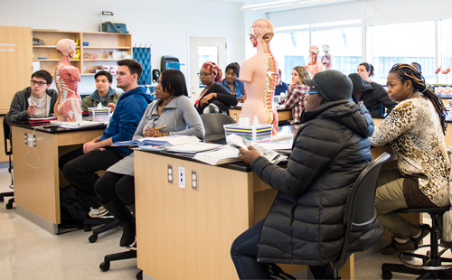 Biology class with students and anatomy models