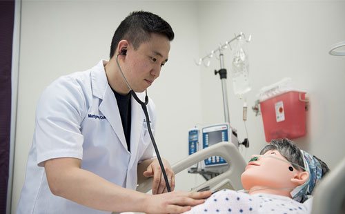 A student in the Transition to Nursing Course checks a mannequin patient.