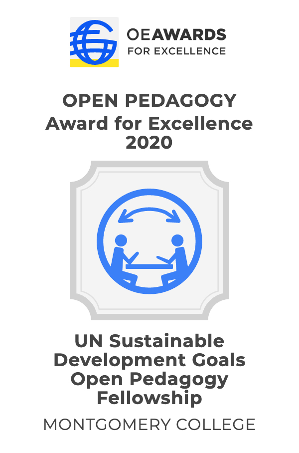 Open Education Fellowship Award 2020