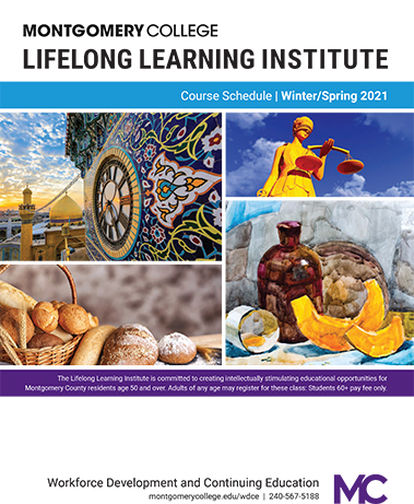 Lifelong Learning Institute brochure of classes